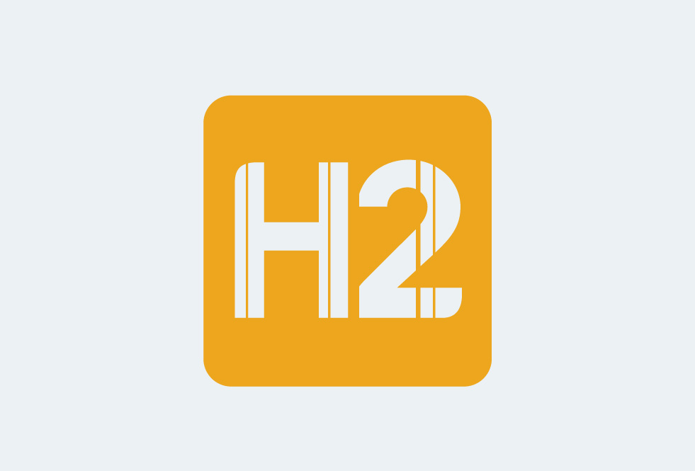 fitness brand identity h2