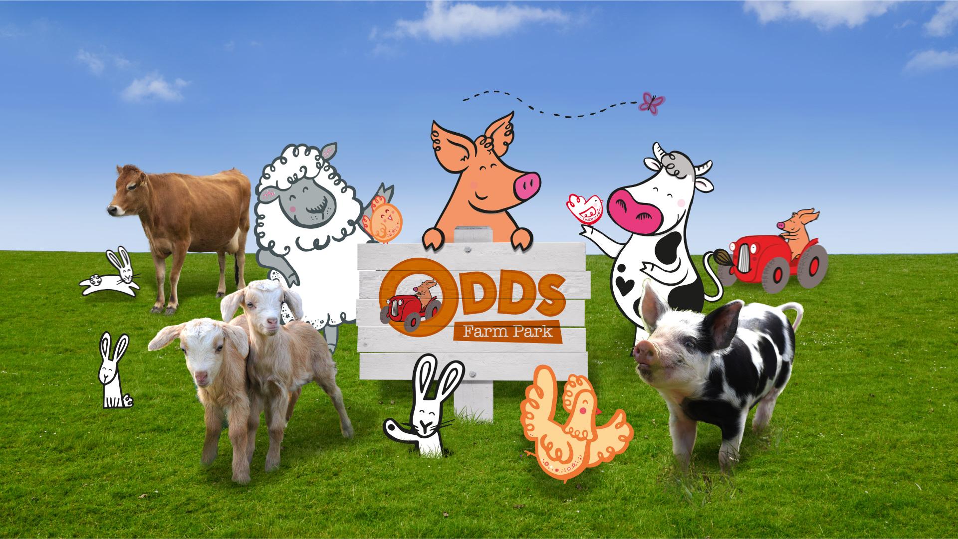 Branding Farm Park Odds