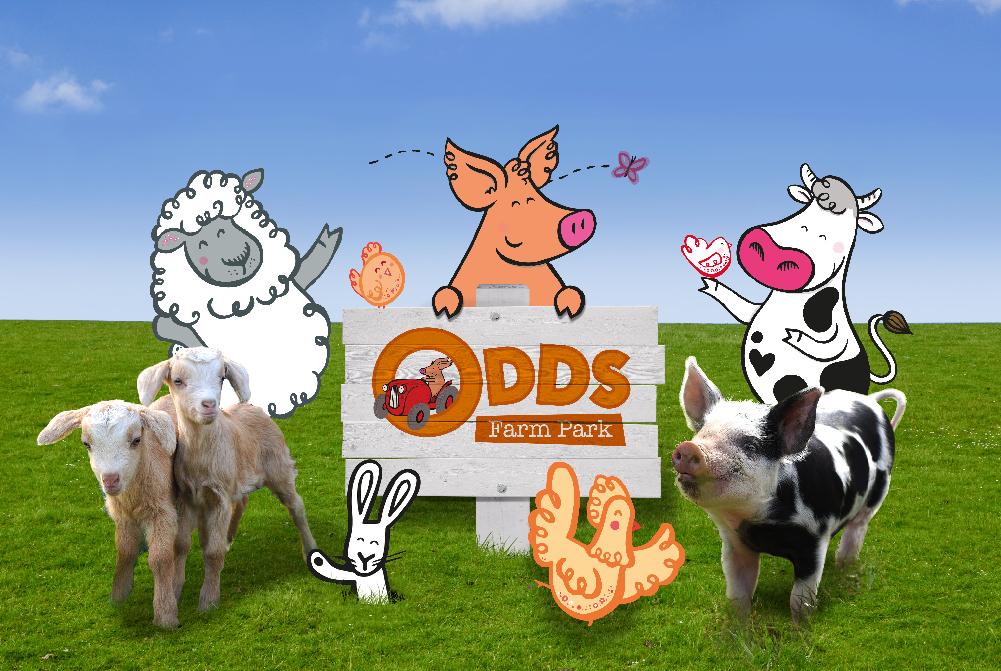 Farm Park Branding Kids
